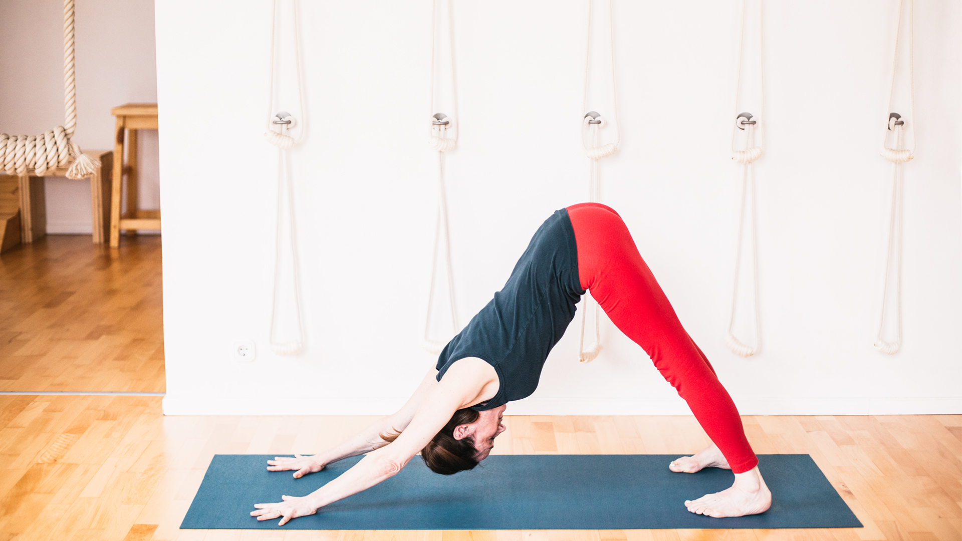 elizabeth-smullens-brass-downward-facing-dog-adho-mukha-svanasana